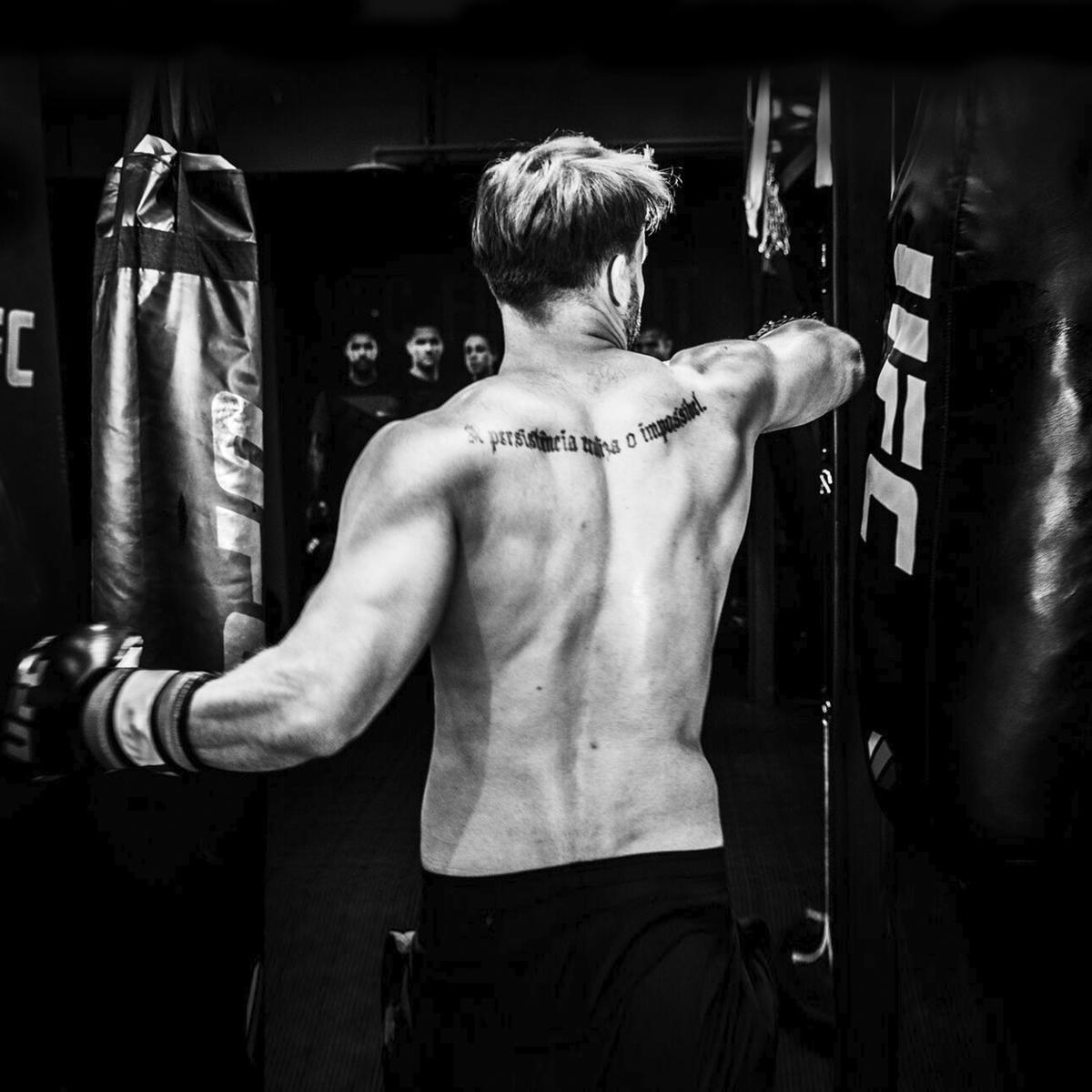 UFC Боксерский мешок